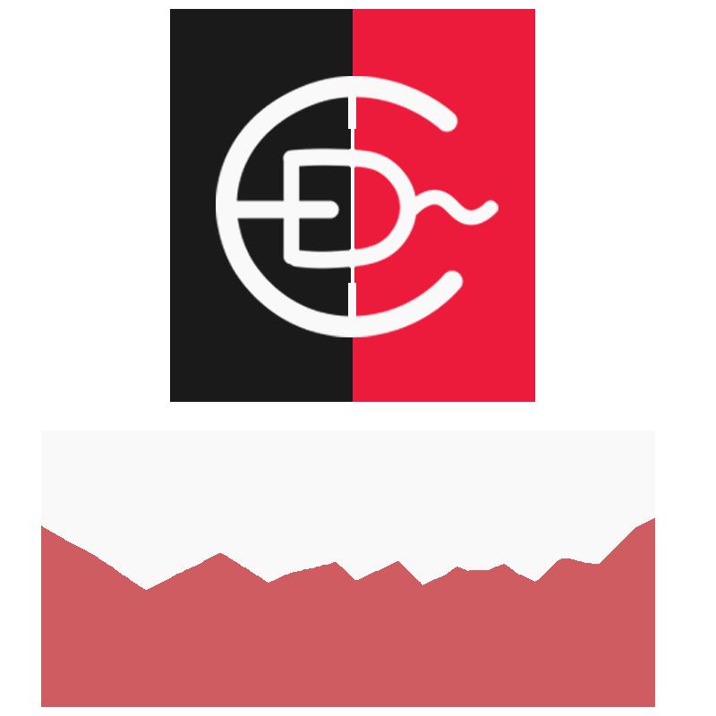 Logo-Ecrip-Design